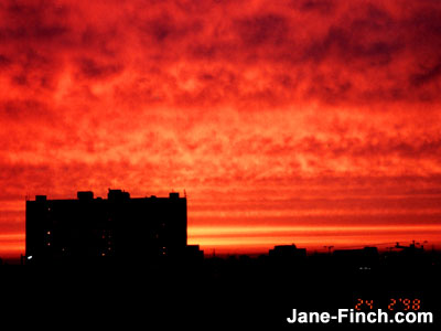 Jane-Finch Sunset (1998)