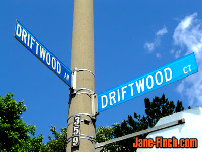 driftwooddriftwood.jpg